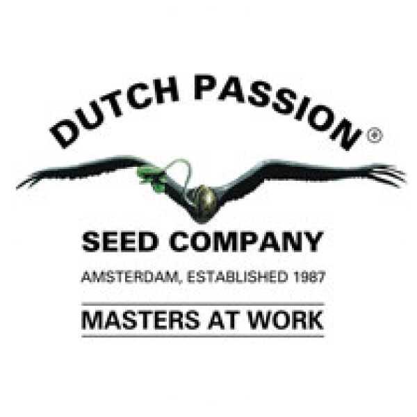 Dutch Passion Seed Company