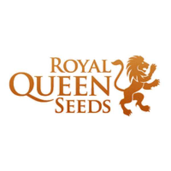 Royal Queen Seeds