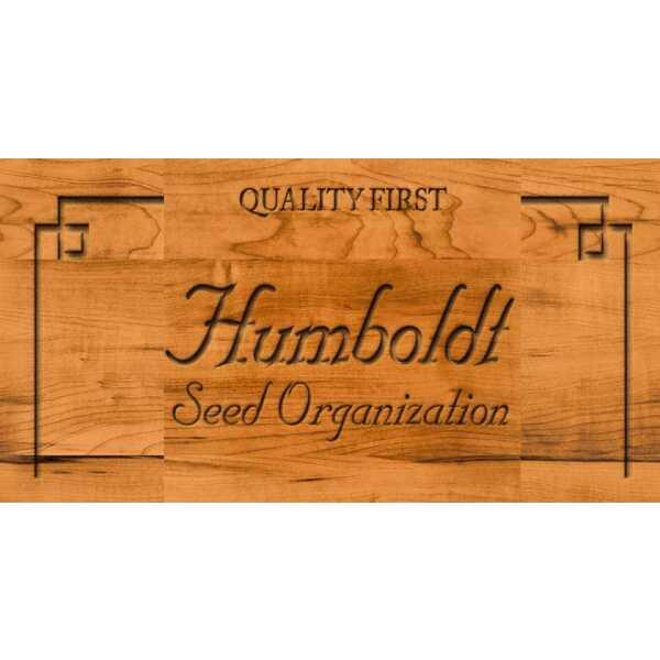 Humboldt Seeds Organisation